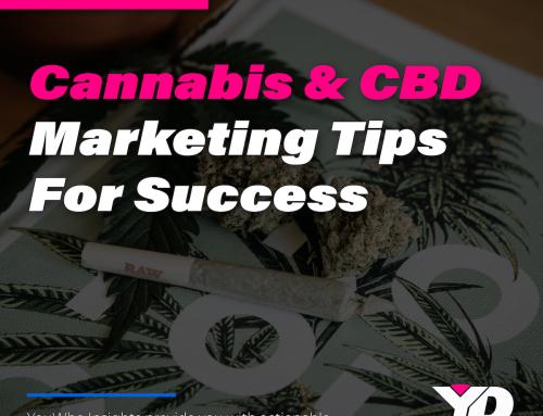 Cannabis & CBD Marketing Tips for Success