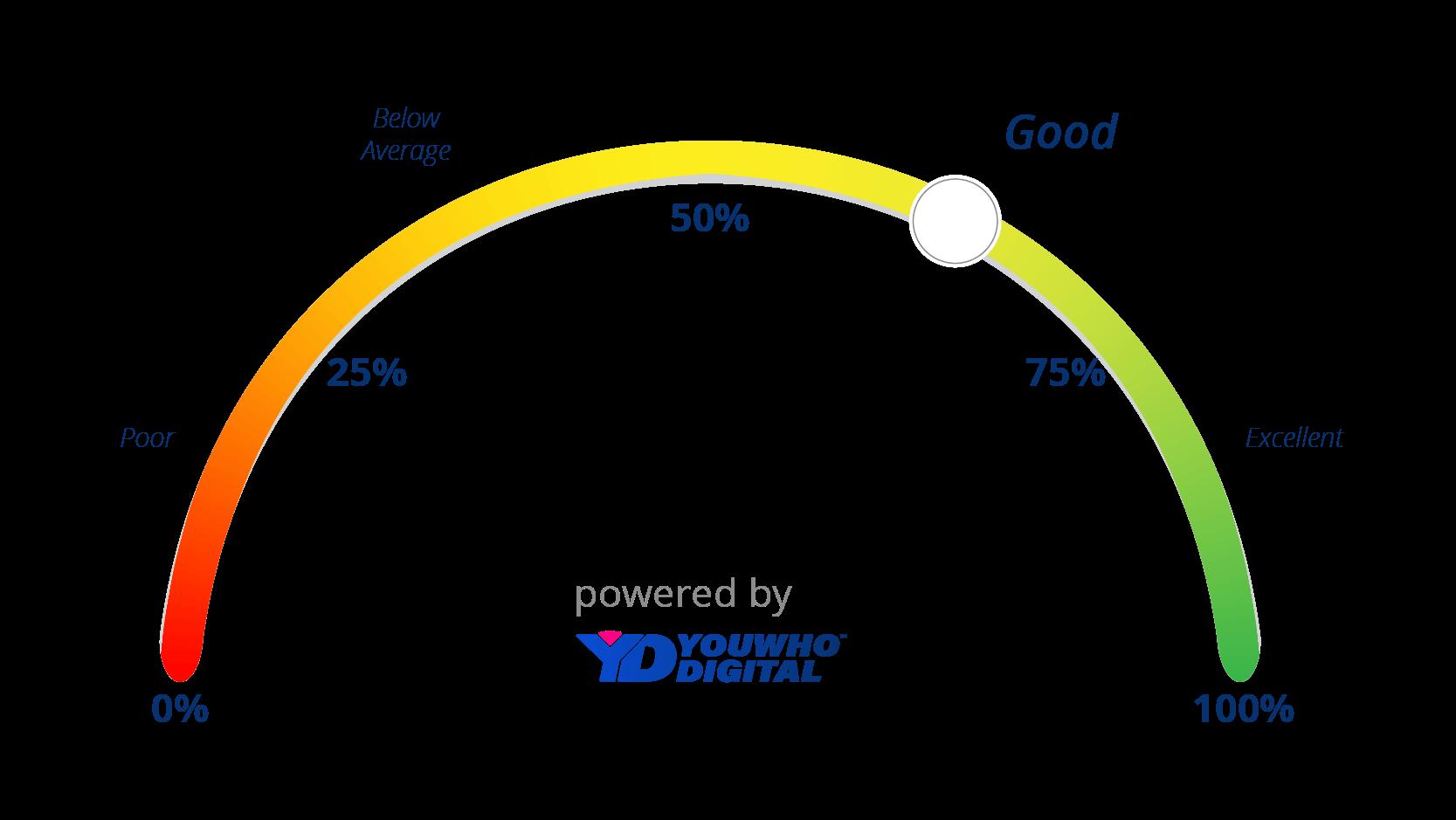Good Digital Presence Score Indicator-03